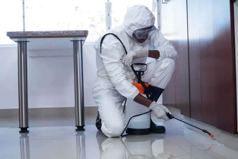 The significance of hiring a pest management skilled to the house