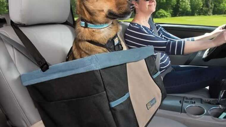Why you solely have to purchase a top quality automobile seat in your canine