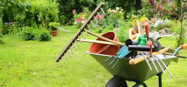 eight important instruments that can make your gardening expertise simpler and extra fulfilling