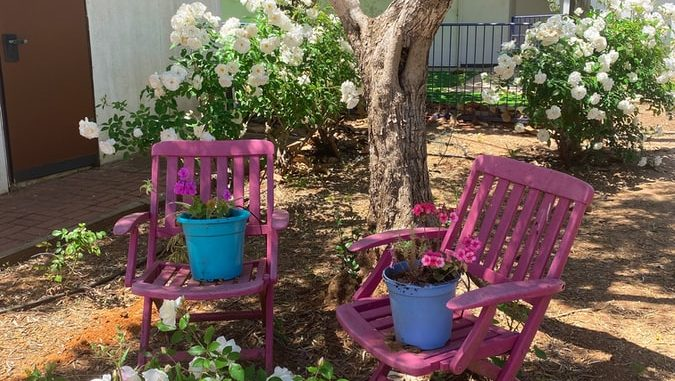 The significance of taking good care of your backyard