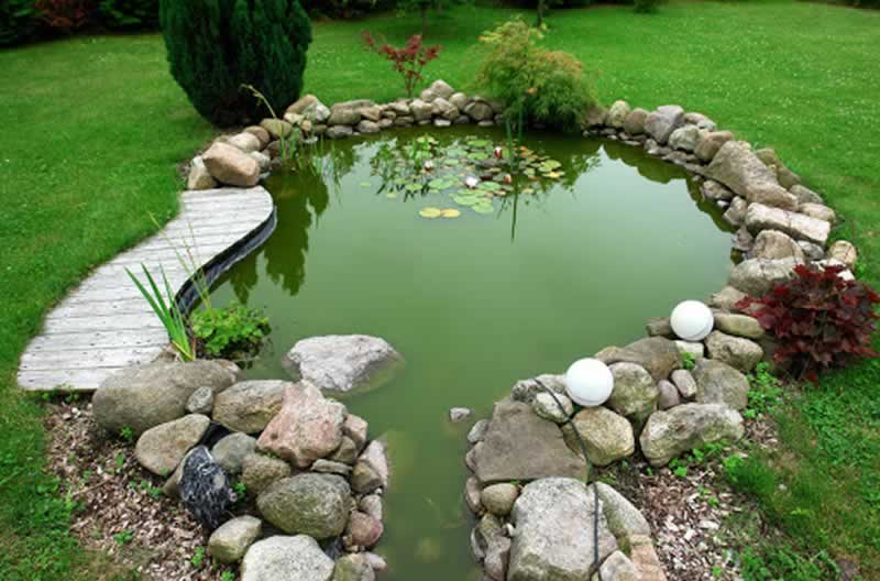 Easy methods to construct your personal backyard pond