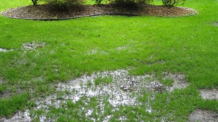 How are you going to enhance the drainage of your garden?
