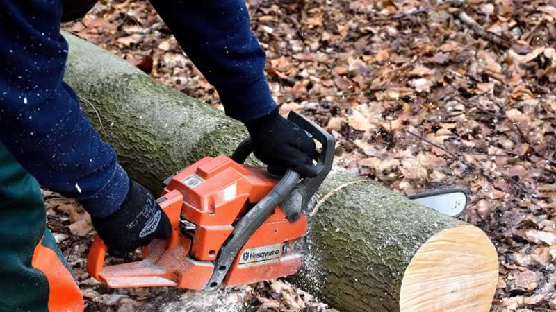 Utilizing a Chainsaw: Final Information