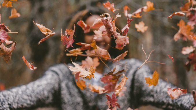 7 initiatives to arrange your private home for fall