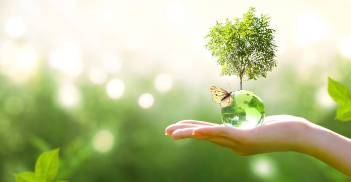 Holding tempo with sustainability