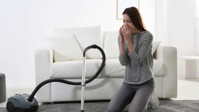 Family cleansing suggestions to assist alleviate the severity of allergic reactions