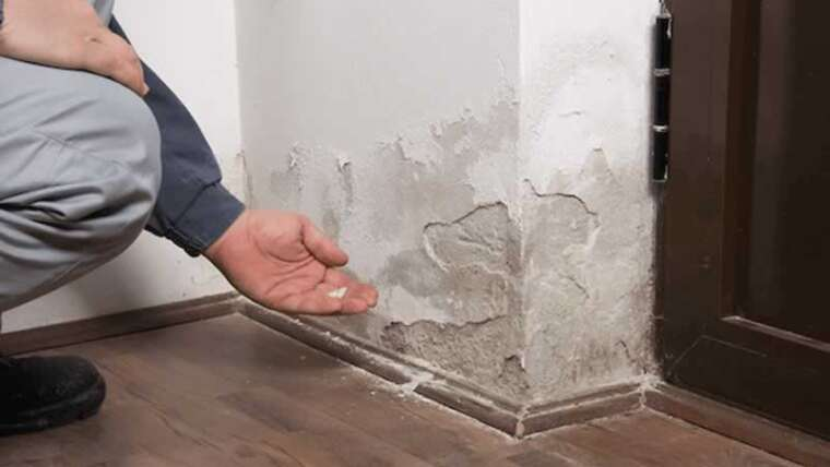 spot water injury in your house