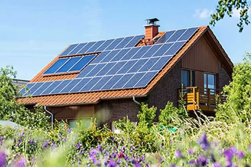 Inexperienced Dwelling: 10 Initiatives to Make Your Dwelling Greener This Spring