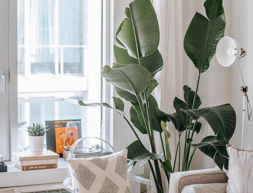 5 dwelling styling developments you'll covet in 2021