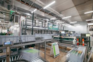 Woolworths opens new eStore