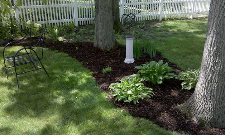 Mulching timber: good or unhealthy?