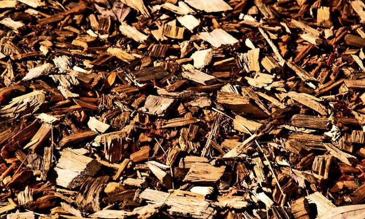 Wooden chip mulch: the whole lot you must know